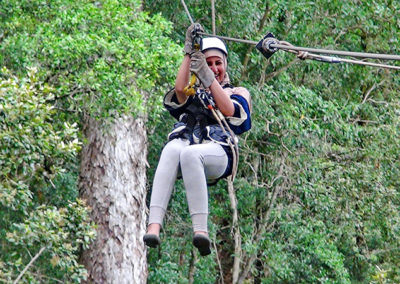 Mosaic Tourism - Forest or Falls Ziplining
