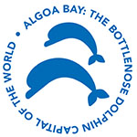 Algoa Bay - The Bottlenose Dolphin Capital of the World